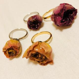 rose ring(リング)