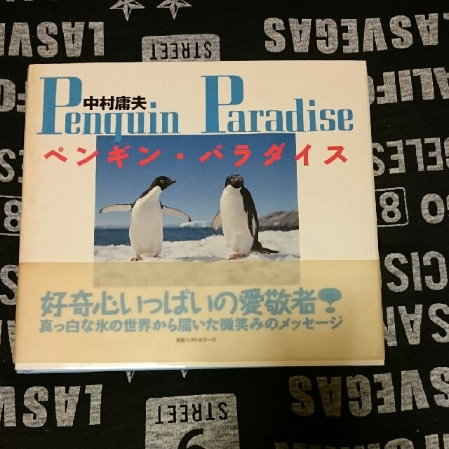 ペンギン好きの人へ エンタメ/ホビーの本(アート/エンタメ)の商品写真