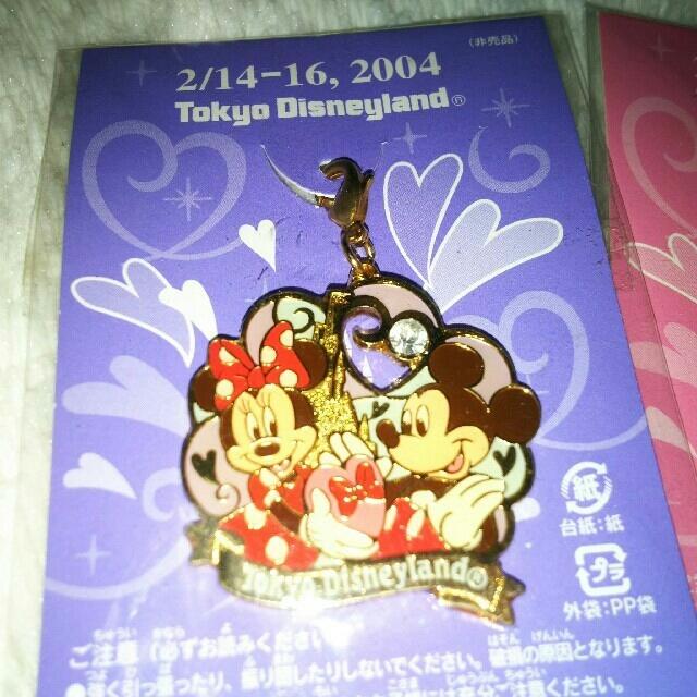 Disney(ディズニー)のディズニーランド 非売品 バレンタイン ミッキー ミニー エンタメ/ホビーのおもちゃ/ぬいぐるみ(キャラクターグッズ)の商品写真