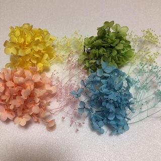 【65】ハーバリウム花材(プリザーブドフラワー)