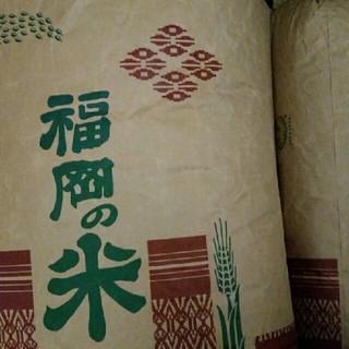 玄米30キロ 減農薬米