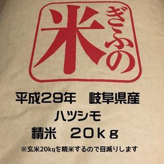 お米 ハツシモ 岐阜県産 玄米20kgを精米してお届けします