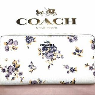コーチ(COACH)の新品 コーチ 花柄フローラル プリント 長財布 残り1個(財布)