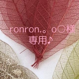 ronron.。o○様 専用ページです♪(ドライフラワー)