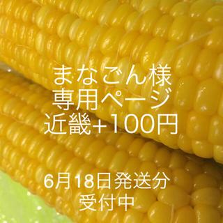 まなごん様専用ページ 近畿(野菜)