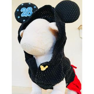 ディズニー(Disney)の犬 ミッキー メッシュ SS(犬)