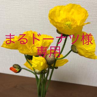 ムジルシリョウヒン(MUJI (無印良品))のまるドーナツ様 専用ページ(化粧水 / ローション)