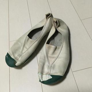 ムーンスター(MOONSTAR )の上履き★緑☆23.5cm★(スクールシューズ/上履き)