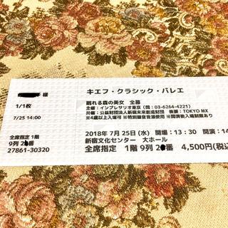 7/25 キエフバレエ「眠れる森の美女」@新宿文化センター(バレエ)