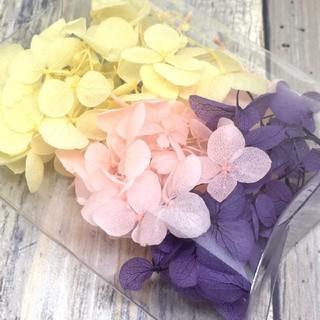 みちのく紫陽花 ドライフラワー 3色セット (ドライフラワー)