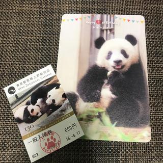 シャンシャン 1歳 バースデーカード 使用済入場券(印刷物)