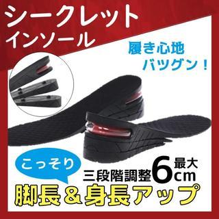 シークレット インソール バレずに身長UP!足を長く(za1)(その他)