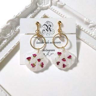 shell×dryflower earring