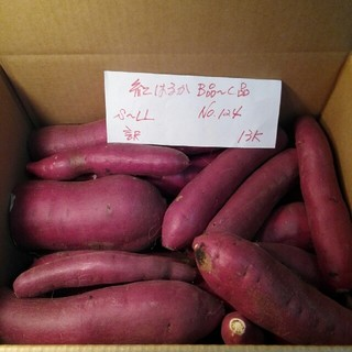 超お得‼ 訳あり☆限定品☆貯蔵品の紅はるかB品C品混ぜて約13Kです。
