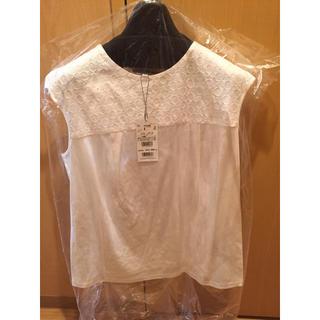 エージー(AG)のトップス(Tシャツ(半袖/袖なし))