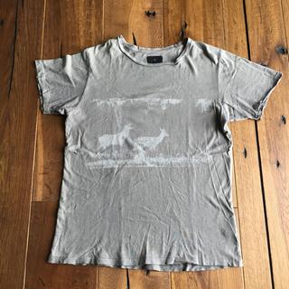 アイラ(ila)のila  Tシャツ(Tシャツ/カットソー(半袖/袖なし))