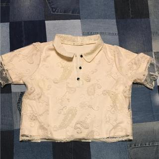 マジェスティックレゴン(MAJESTIC LEGON)の❁︎レースポロシャツ❁︎(ポロシャツ)
