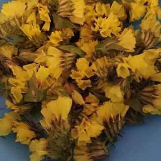 ハーバリウム スターチス黄色6グラム(ドライフラワー)