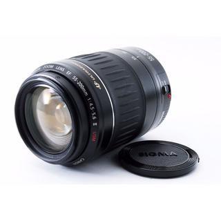 キヤノン(Canon)の✨定番 超望遠レンズ✨Canon EF 90-300mm USM(レンズ(ズーム))
