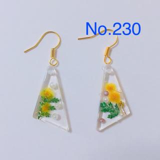 モミザのピアス No.230(ピアス)
