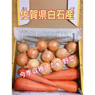 佐賀県白石産・とれたて新鮮野菜詰め合わせ
