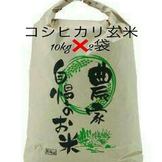 🍒29年度🍒滋賀県のコシヒカリ玄米20kg【10kg✖2袋】🍒送込