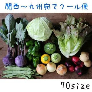 70size農家直送野菜セット 関西~九州宛てクール便(野菜)