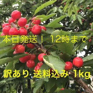 さくらんぼ 佐藤錦 お得な訳あり 1kg 秋田県産