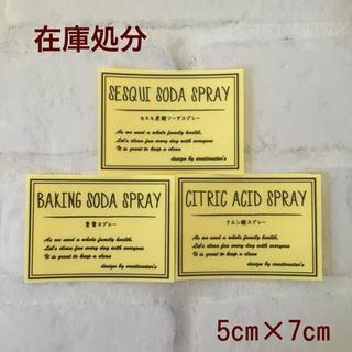 【在庫処分】エコ洗剤スプレーラベルLサイズ手書き風透明PET(キッチン小物)