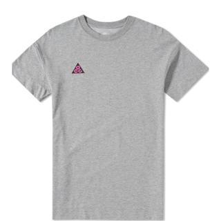ナイキ(NIKE)のNIKE ACG tシャツ しょうえー様(Tシャツ/カットソー(半袖/袖なし))