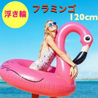【完売目前】【残り9個】スワン 夏 フラミンゴ 海 アイテム 120cm(その他)