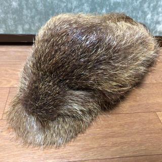 FUR 帽子(ハンチング/ベレー帽)
