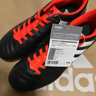 adidas - 新品  adidas  スパイク  25.5センチ  早い者勝ち