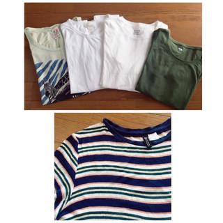 サンタモニカ(Santa Monica)のTシャツ 五点セット(Tシャツ(半袖/袖なし))