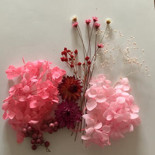 ハーバリウム 花材セット レッド&ピンク