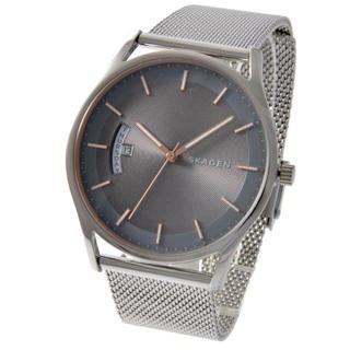 スカーゲン(SKAGEN)の新品 スカーゲン 時計 メンズ(腕時計(アナログ))