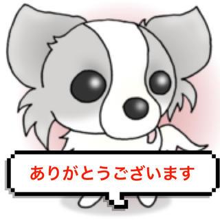 ( ●˙o˙●)様専用♡(ヘアケア)