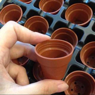 ♡プラスチック一寸鉢 36個セット♡(プランター)