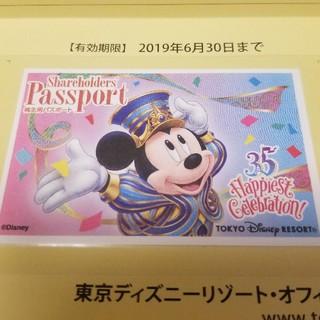 東京ディズニーランド ディズニーシー 株主用パスポート(遊園地/テーマパーク)