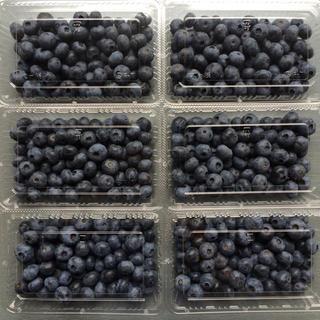 新鮮!農園のブルーベリー(1.2キロ)(フルーツ)