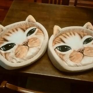 猫チャンベッド2個セット