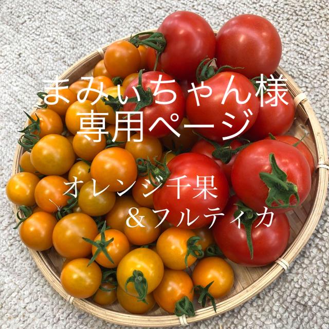 まみぃちゃん様 オレンジ千果&フルティカ 2キロ 食品/飲料/酒の食品(野菜)の商品写真