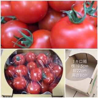 フルティカ 1キロ(野菜)