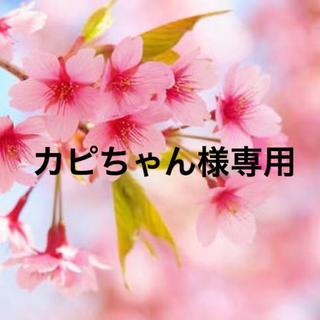 カピちゃん様専用(声優/アニメ)