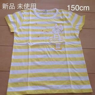 ニットプランナー(KP)の新品 150cm KP  Tシャツ(Tシャツ/カットソー)