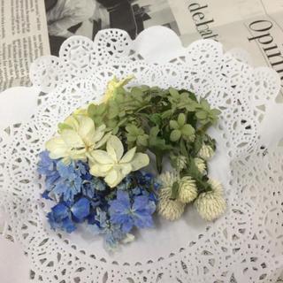 紫陽花とセンニチコウのドライヘッドブルー(ドライフラワー)