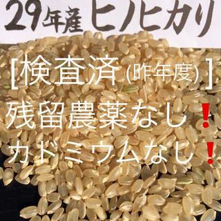 29年産玄米5kgヒノヒカリ(米/穀物)