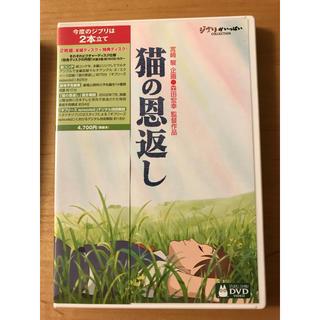 ジブリ(ジブリ)の猫の恩返し DVD(アニメ)