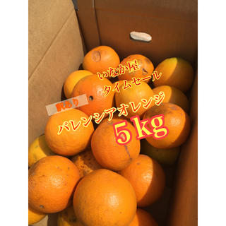 バレンシアオレンジ(フルーツ)
