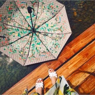 グッチ(Gucci)のGUCCIの折りたたみ傘 晴雨兼用(傘)